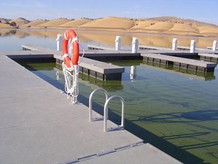 marina construction