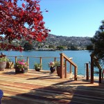Belvedere Redwood Deck