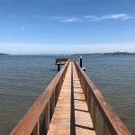Ipe Pier, Tiburon